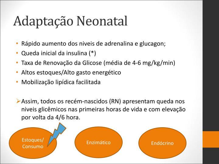 Adaptação Neonatal