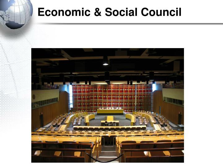 Economic & Social Council
