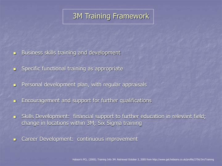3M Training Framework