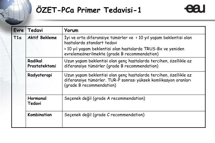 ÖZET-PCa Primer Tedavisi-1