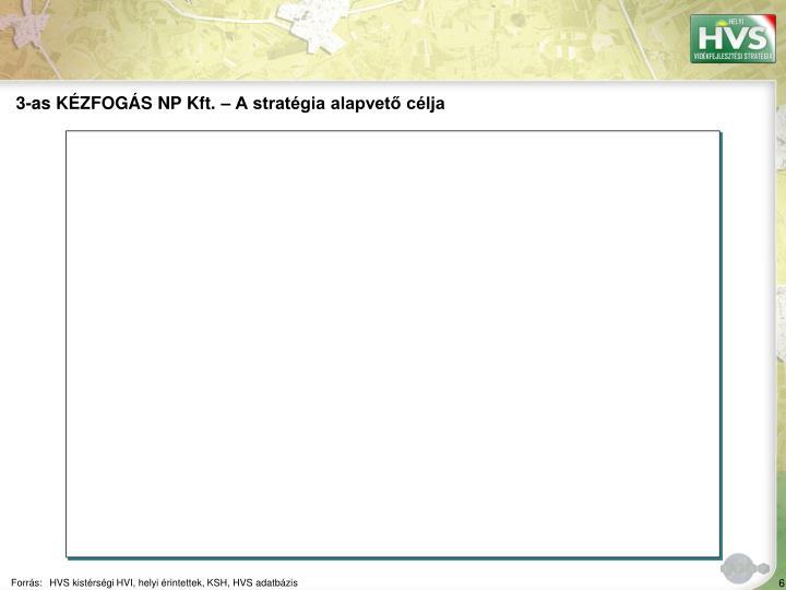 3-as KÉZFOGÁS NP Kft. – A stratégia alapvető célja