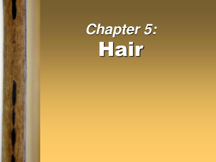 Chapter 5 hair