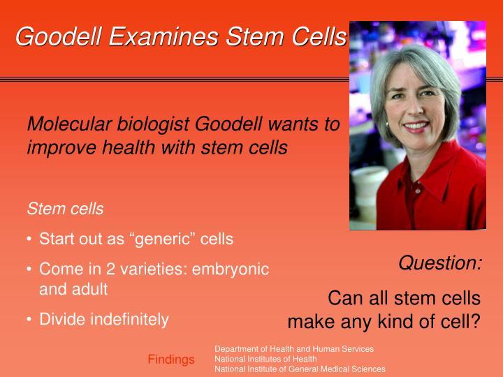 Goodell Examines Stem Cells