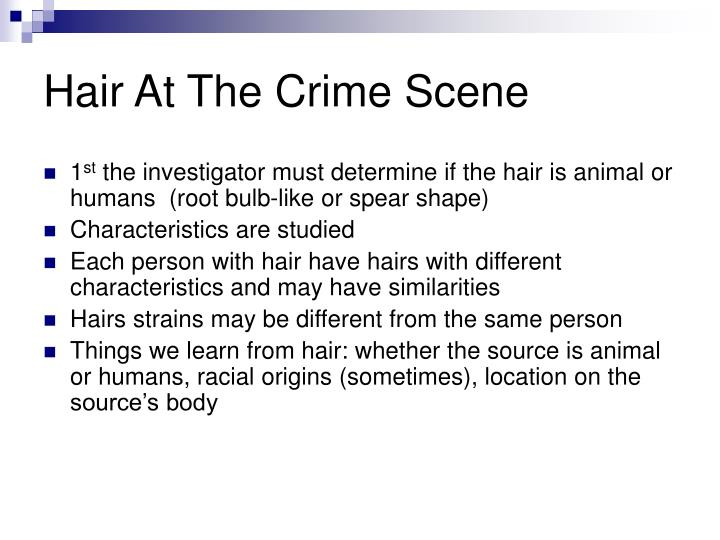 Hair At The Crime Scene