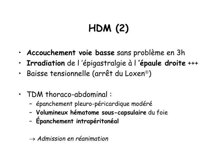 HDM (2)