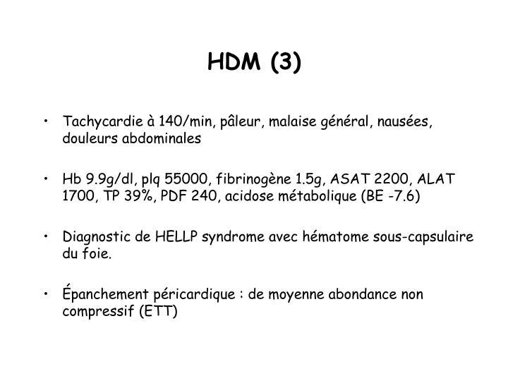 HDM (3)
