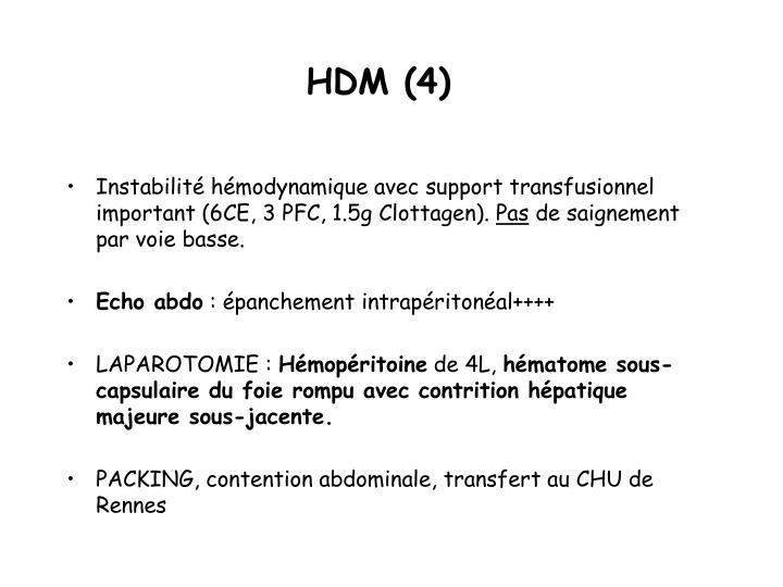 HDM (4)