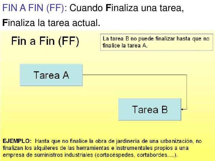 FIN A FIN (FF):