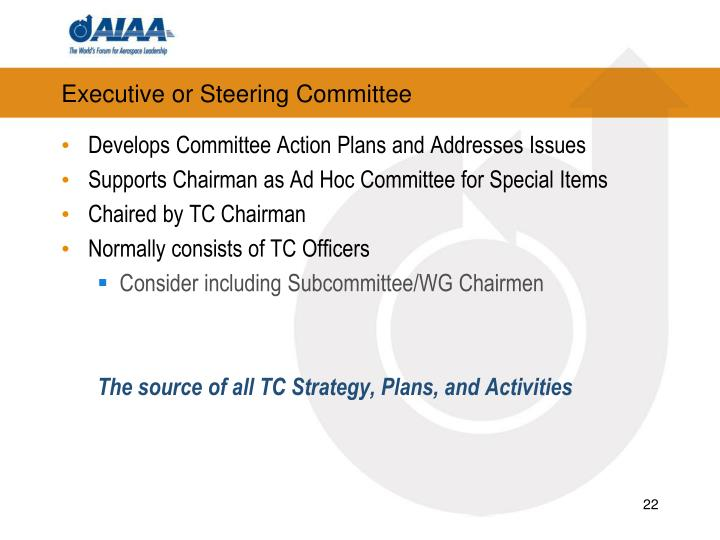 Executive or Steering Committee