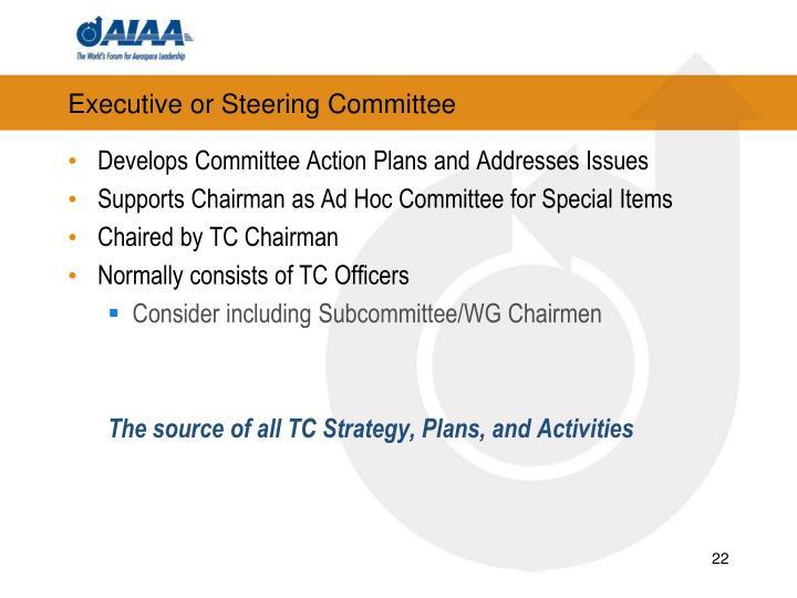 Executive or Steering Committee