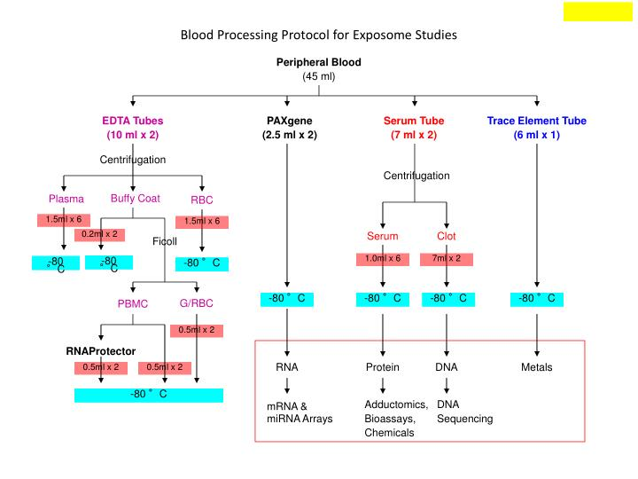 Blood Processing Protocol for Exposome Studies
