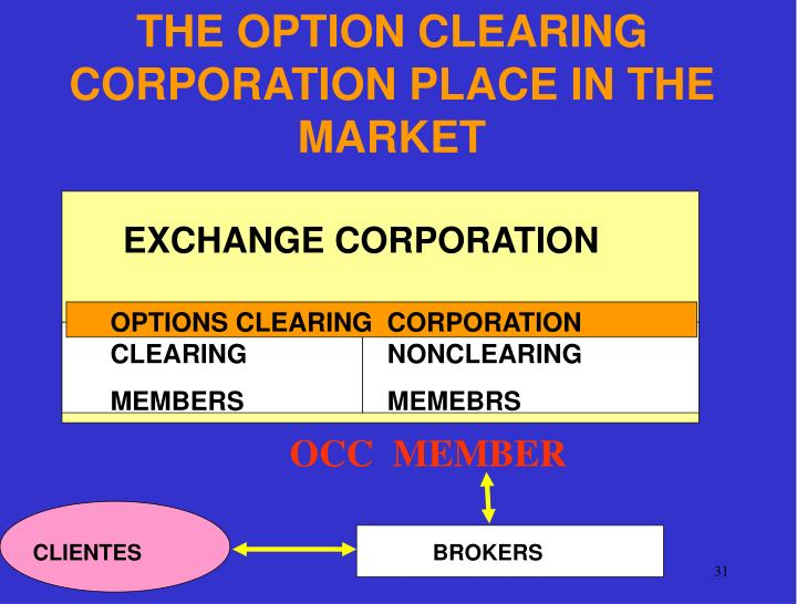 THE OPTION CLEARING CORPORATION PLACE IN THE MARKET