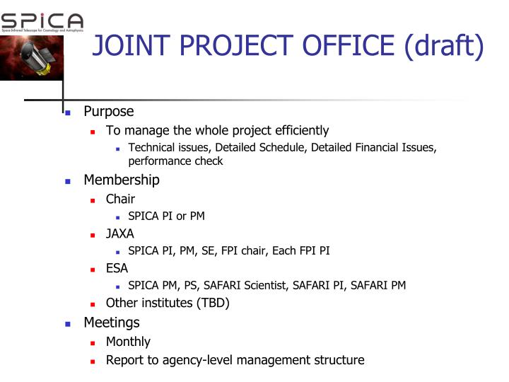 JOINT PROJECT OFFICE (draft)