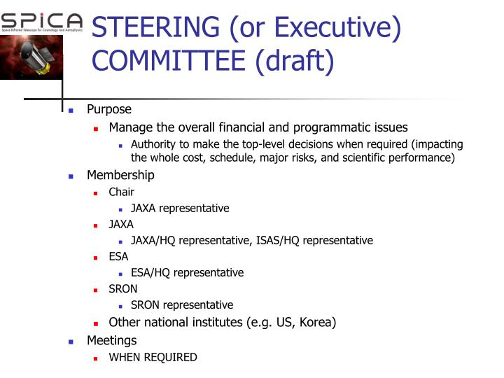 STEERING (or Executive) COMMITTEE (draft)