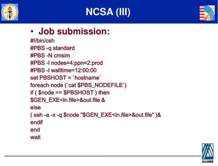 NCSA (III)