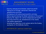 management board it is chaired by the project leader