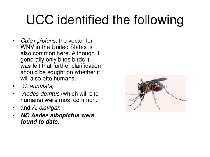 UCC identified the following