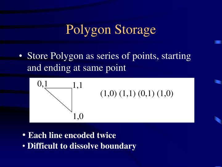 Polygon Storage