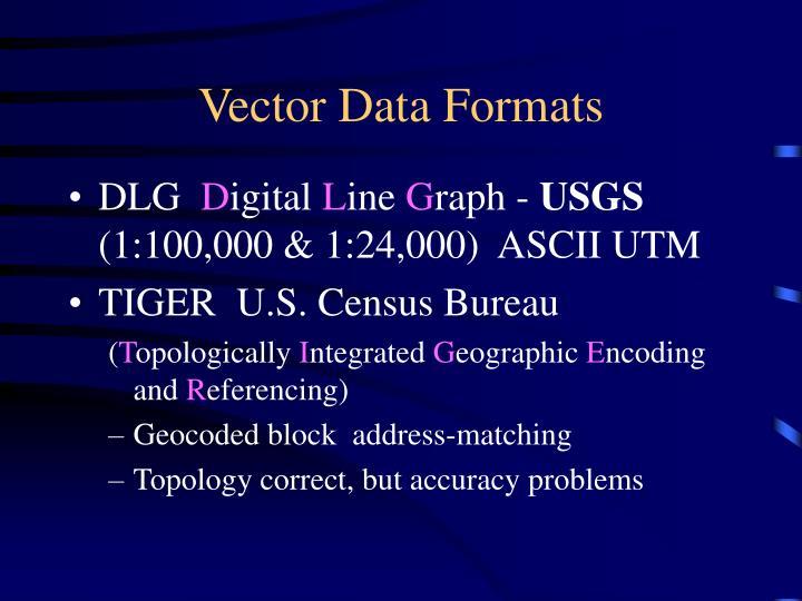 Vector Data Formats
