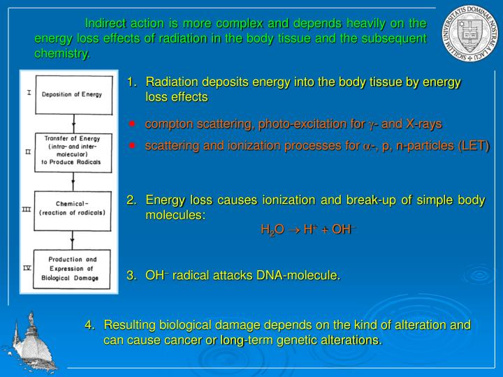 Radiation deposits energy into the body tissue by energy loss effects