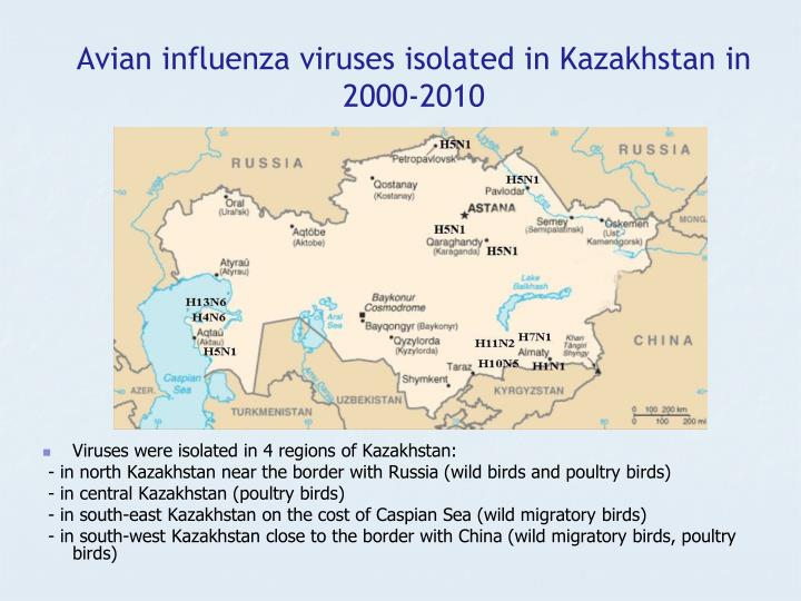 Avian influenza viruses isolated in Kazakhstan in 2000-2010