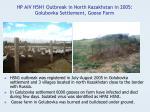 hp aiv h5n1 outbreak in north kazakhstan in 2005 golubovka settlement goose farm