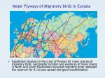 major flyways of migratory birds in eurasia