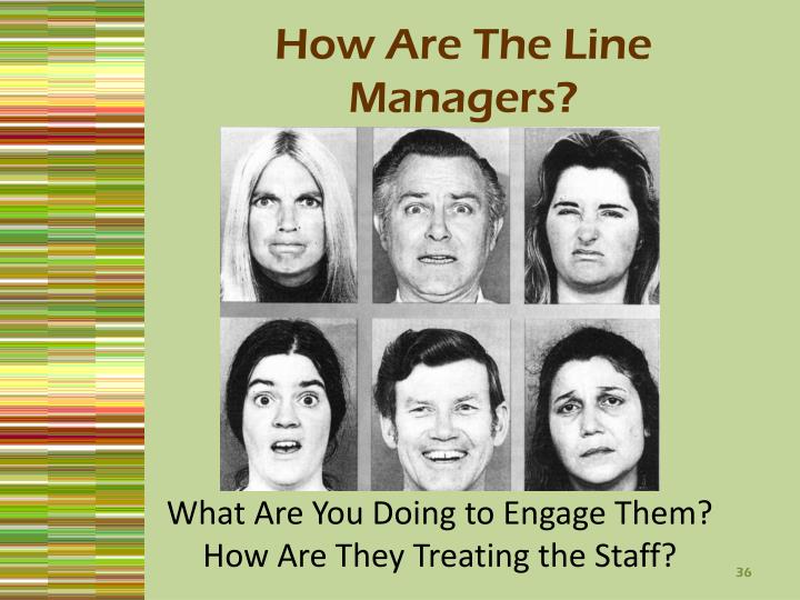 How Are The Line Managers?