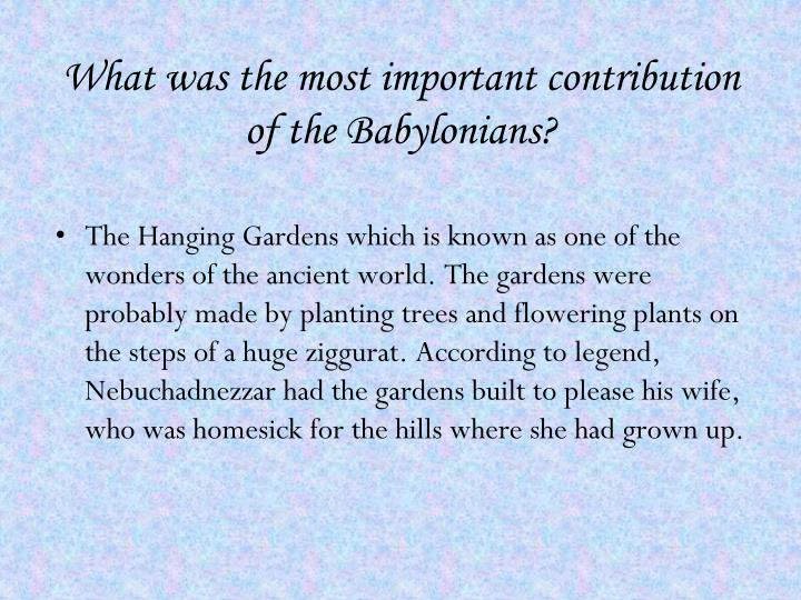 What was the most important contribution of the Babylonians?