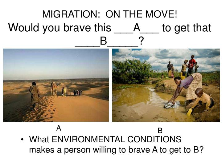 MIGRATION:  ON THE MOVE!