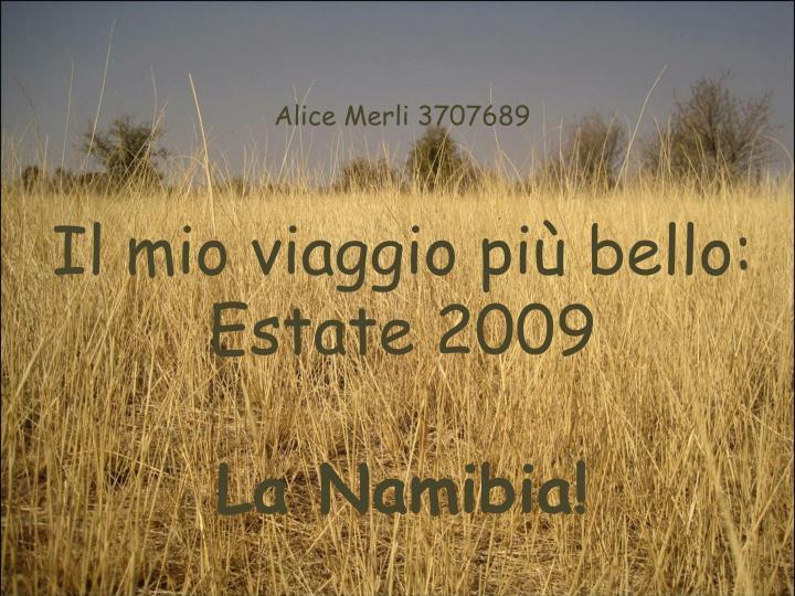 Alice Merli 3707689
