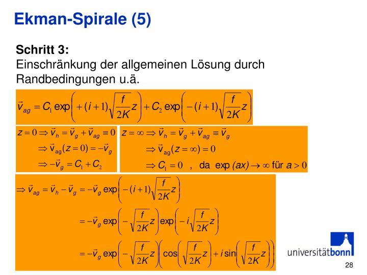Ekman-Spirale (5)