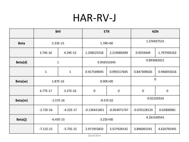 HAR-RV-J