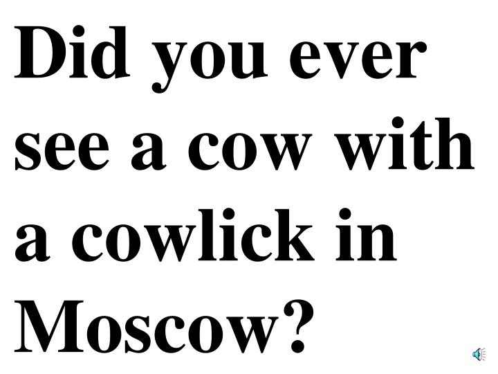 Did you ever see a cow with a cowlick in Moscow?
