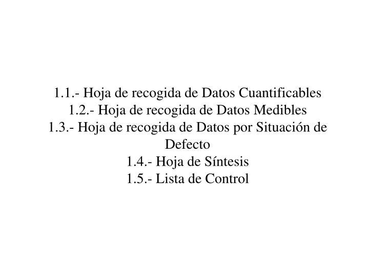 1.1.- Hoja de recogida de Datos Cuantificables