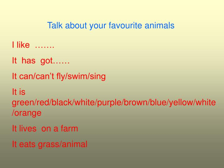 Talk about your favourite animals