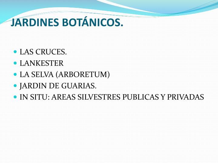 JARDINES BOTÁNICOS.
