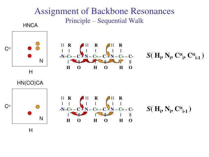 Assignment of Backbone Resonances