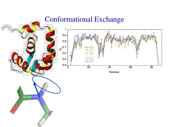 Conformational Exchange
