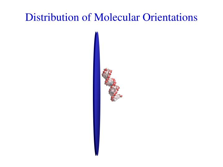 Distribution of Molecular Orientations