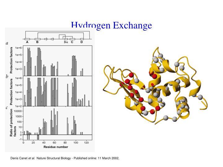 Hydrogen Exchange