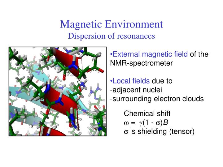 Magnetic Environment