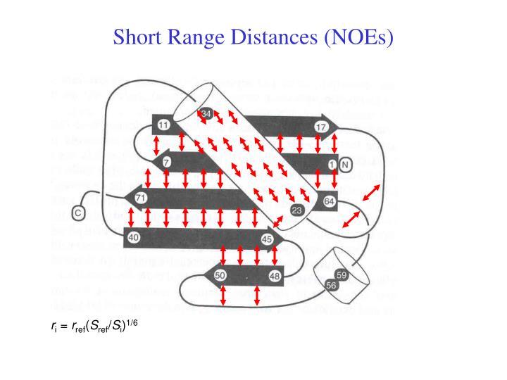 Short Range Distances (NOEs)