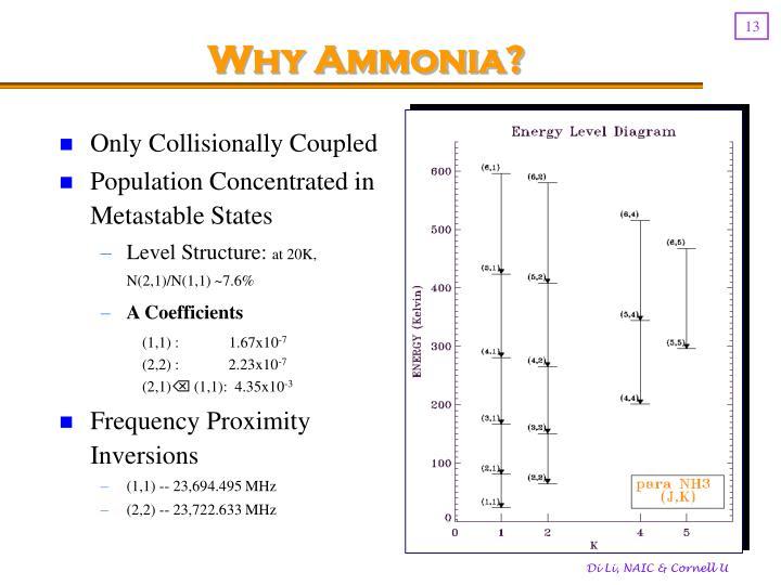 Why Ammonia?