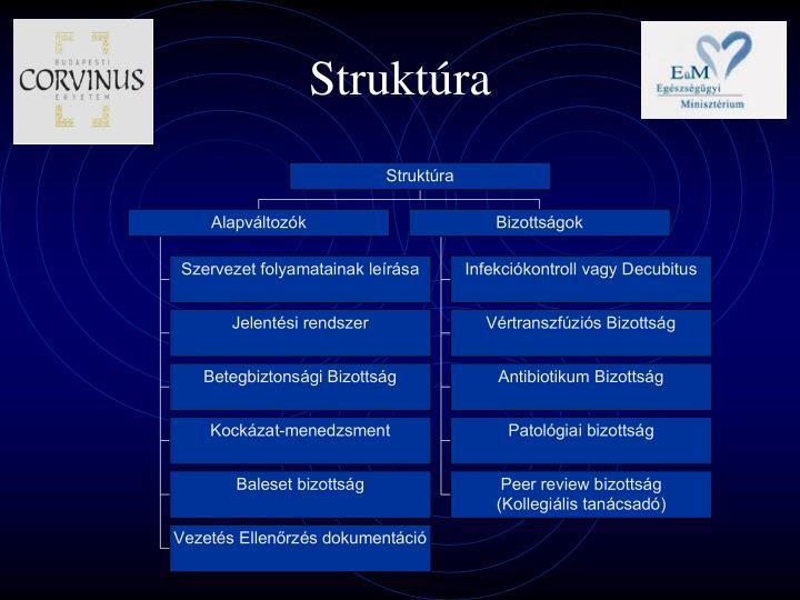 Struktúra