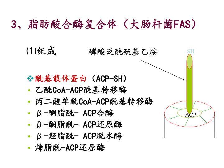 磷酸泛酰巯基乙胺
