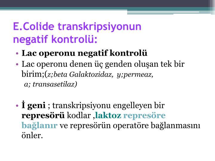 E.Colide transkripsiyonun