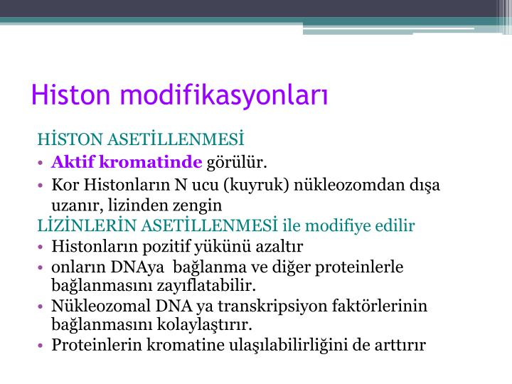 Histon modifikasyonları