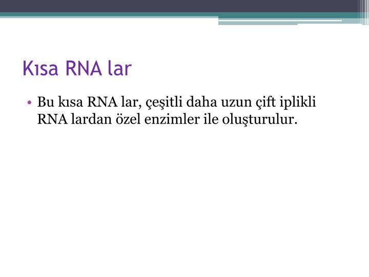 Kısa RNA lar