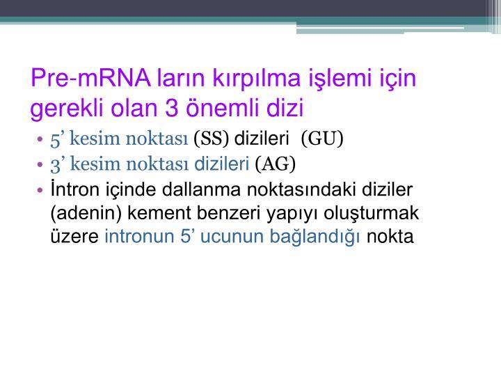 Pre-mRNA ların kırpılma işlemi için  gerekli olan 3 önemli dizi